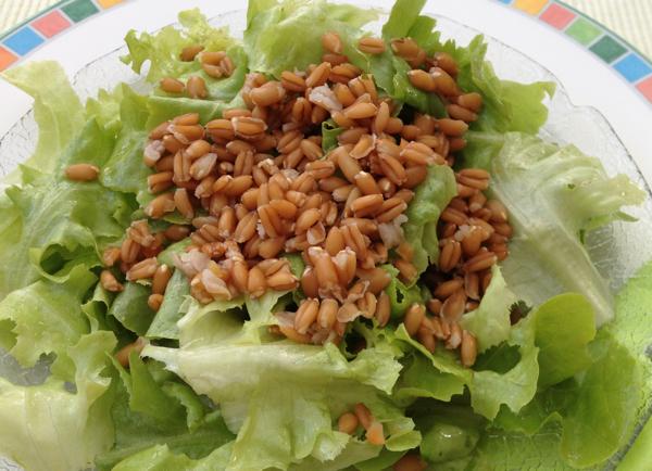 Kopfsalat-mit-Dinkel